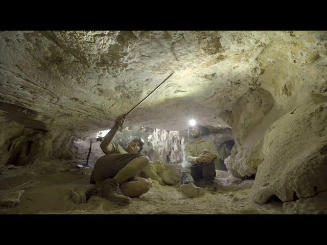 受暖化威脅 印尼蘇拉威西島4.55萬年前岩洞壁畫剝落