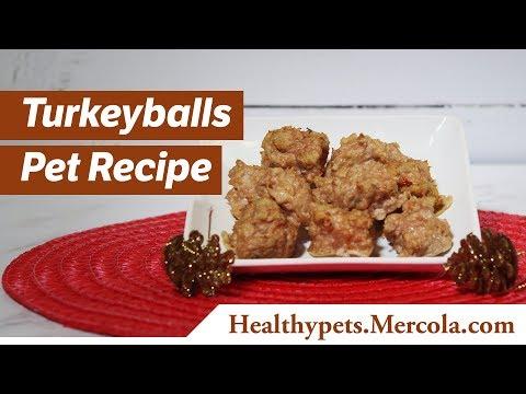 Turkeyballs Pet Recipe
