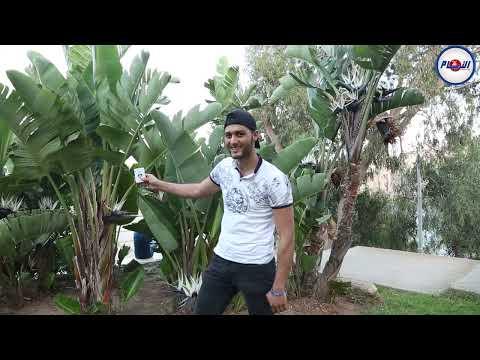 الحلقة 3 من برنامج الألعاب السحرية مع رضا عباسي