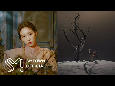 TAEYEON 태연 '사계 (Four Seasons)' MV
