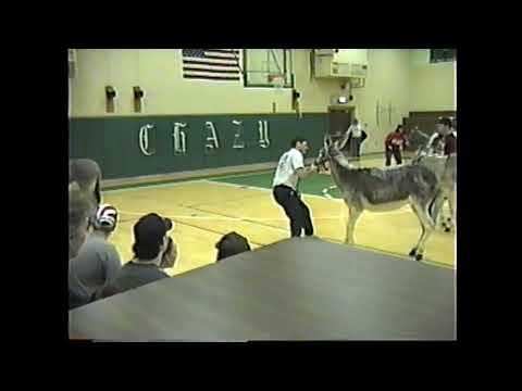 CCRS Donkey Basketball 3-11-96