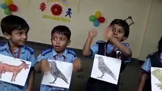 8th Feb 2019, St. Mary's High School, Vasanthnagar, Animal Sounds Hindi Rhymes by PP1.