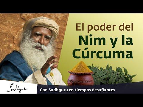 El poder del Nim y la Cúrcuma | Darshan con Sadhguru