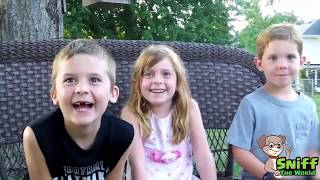 BEST OF KIDS'S SURPRISE REACTIONS to Pregnancy Announcement Compilation