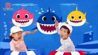 Baby Shark Dance but it gets 0.05x faster every time it says doo doo dodoo dodoo.