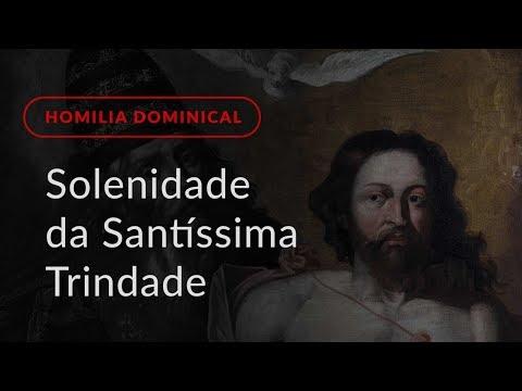 Solenidade da Santíssima Trindade (Homilia Dominical.457)