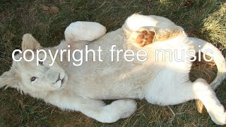 [COPYRIGHT FREE MUSIC] Chris Haugen - Castleshire