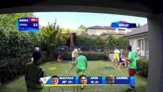 Backyard Cricket World Cup Final
