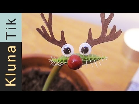 MERRY CHRISTMAS!!! Kluna Tik Dinner #45 | ASMR eating sounds no talk