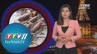 TayNinhTV   Tiêu Điểm 365 22-5-2019   Tin tức ngày hôm nay.