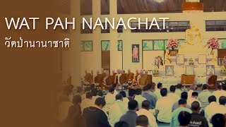 True Little Monk l A rare documentary of Wat Pah Nanachat
