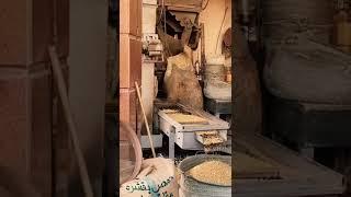 السياحة-والآثار-تطلق-فيديو-تروجي-جديد-عن-محافظة-الغربية