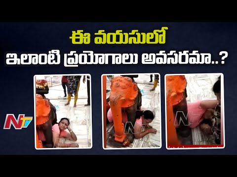 Funny Women, got stuck under the elephant statue in Temple