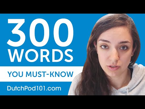 300 Words Every Dutch Beginner Must Know photo