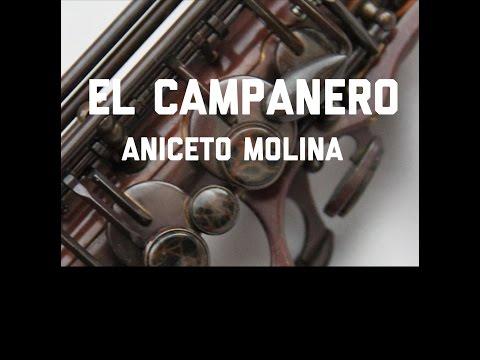 Tutorial de Saxofon Alto Campanero Aniceto Molina Cumbia