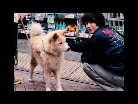 Koochewsen - soul (Official Music Video) 1/11ワンマン@渋谷clubasia