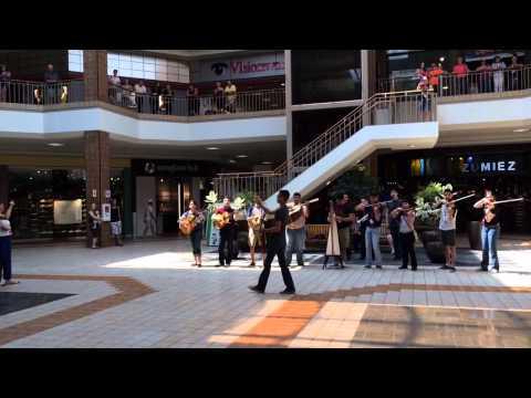 Mariachi Nuevo Santander Mall Flash Mob