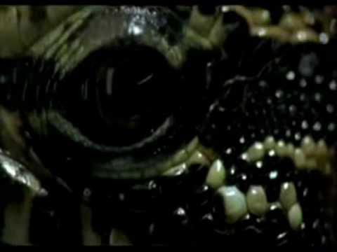 Spider-Man 4 Lizard Trailer - YouTube