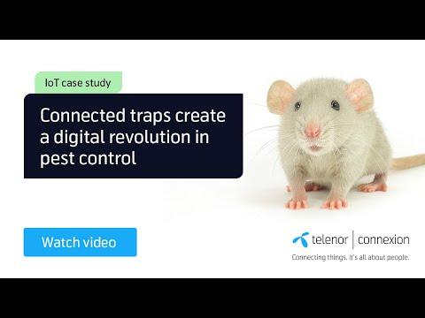 Customer Case:  Anticimex, IoT Revolutionising Pest Control