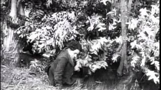 CARLITOS E O RELÓGIO - Charles Chaplin