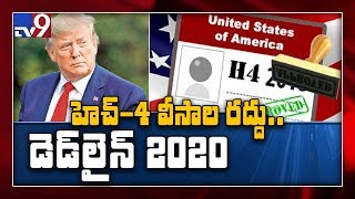 Work ban on H-1B visa holders' spouses pushed back till 20..