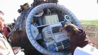 Жизнь на Землю занесли из космоса, доказано на российском спутнике
