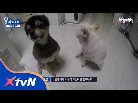 SuperTV [슈퍼TV 속 TV] 예성TV 2탄! 180330 EP.10
