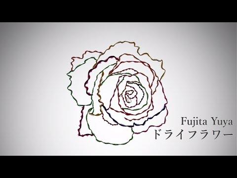 藤田悠也 - ドライフラワー[OFFICIAL MUSIC VIDEO]