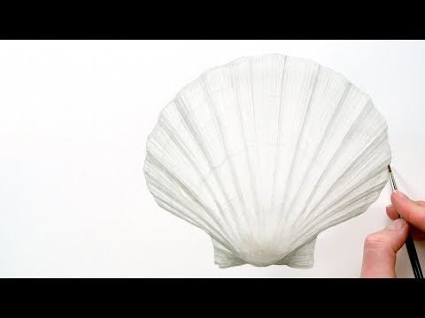 How to paint a 3D shell with just one watercolour mix