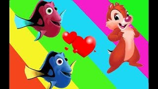 Learn colors Dory Fish Chip and Dale - 손가락 가족 보육 | 어린이  만화 | 아이 노래 컬렉션