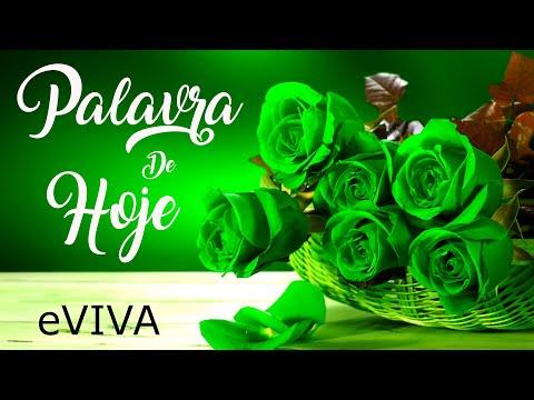 PALAVRA DE HOJE 16 DE JUNHO 2020 eVIVA MENSAGEM MOTIVACIONAL PARA REFLEXÃO SALMO 92 1 2 BOM DIA!