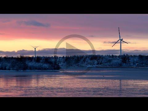 Fornybar energi vinner over kullet // LOS Energy kraftkommentar uke 4 2018