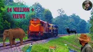 Chapramari Railway Track & Wild life .