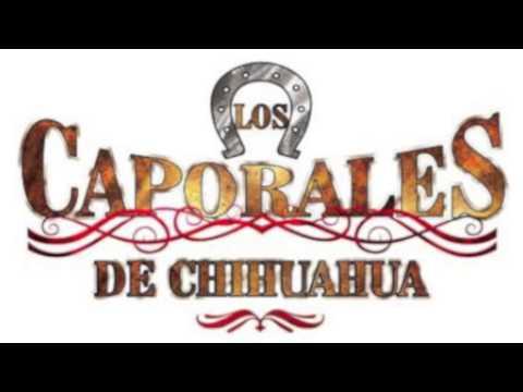 Los Caporales De Chihuahua,Domingo Corrales Y El Corrido De Los Perez.