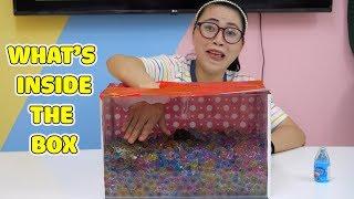 Thử Thách Có Gì Trong Hộp - What's inside the box?