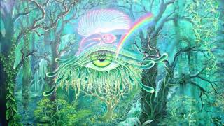 Terence Mckenna - The Third Eye Looks Out At The Holographic Matrix of Informational Totality