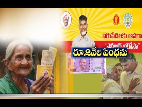 TDP plans to double Pension in AP