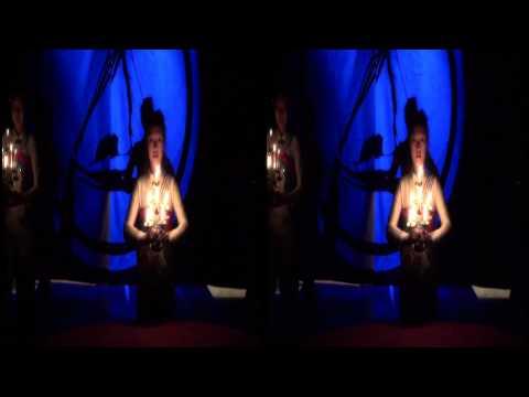 Der Grosse Chinesische Akrobatikzirkus (3D)