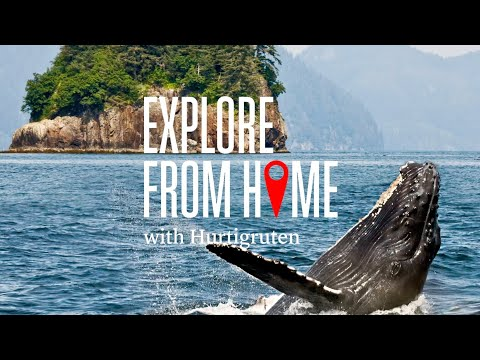 Explore from home with Hurtigruten | Alaska