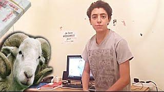 Dz mounir/عيد الاضحى في الجزائر /L39 aid en algerie -