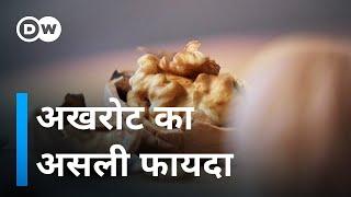 How healthy are nuts? (अखरोट खाने का ये है फायदा) Video HD