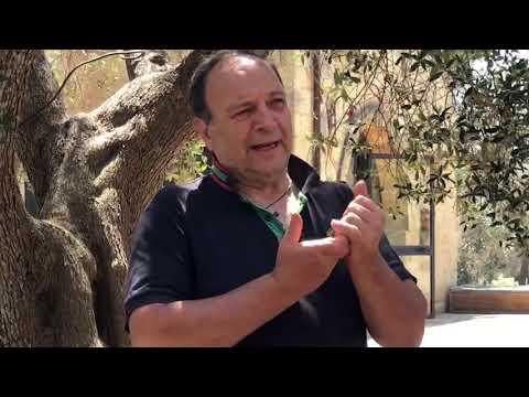 """""""GLI ULIVI"""" UNA AZIENDA AGRICOLA AL SERVIZIO DELLA COMUNITÀ"""