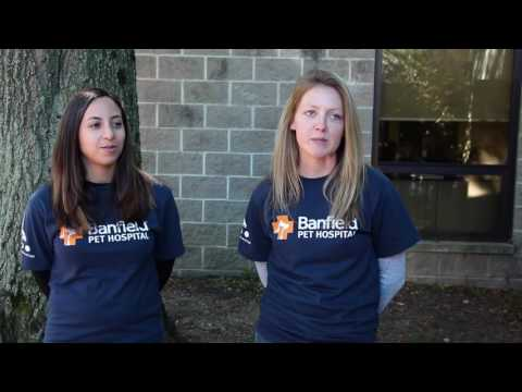 What Volunteering Means to South Jersey