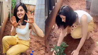 Raashi Khanna accepts Rashmika's challenge, plants a sapli..