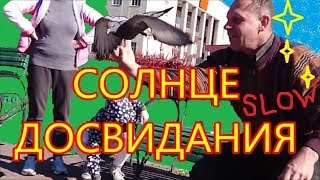 Солнечные дни. Relax music video