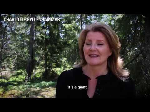 """Charlotte Gyllenhammar om """"Ute Giant"""", 2018"""