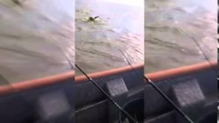 Publicaron video de rescate de kayakista en Arroyo Pareja