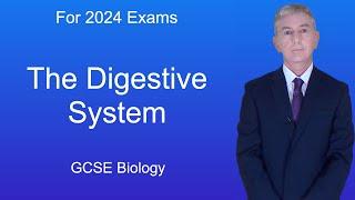 GCSE Science Biology (9-1) The Digestive System