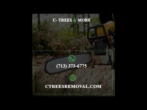 Tree Removal Houston