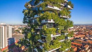 When Trees Meet Buildings   The B1M